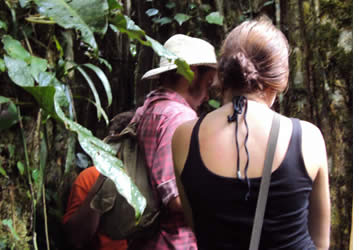 The hike will take you through rainforest and cacao plantations